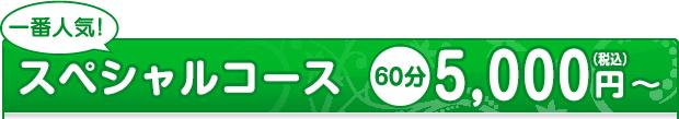 一番人気!スペシャルコース 70分4,500〜(税込)